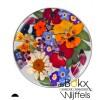 Flora mix colour insignia van My iMenso - 55092